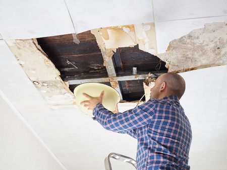 damaged roof: Man Collecting Water In basin From Ceiling. Ceiling panels damaged.
