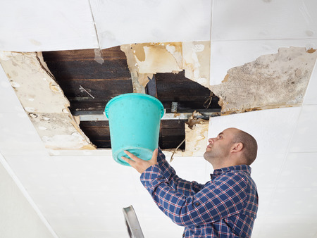 Man Collecting Water In Bucket From Ceiling. Ceiling panels damaged