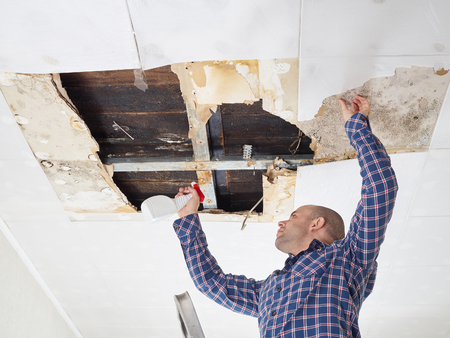 man cleaning mold on ceiling.Ceiling panels damaged  huge hole in roof from rainwater leakage.Water damaged ceiling . Banque d'images