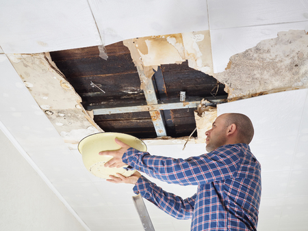 mildew: Man Collecting Water In basin From Ceiling. Ceiling panels damaged  huge hole in roof from rainwater leakage.Water damaged ceiling .