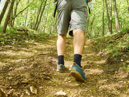 uphill: A man walk uphill the forest trail .Hiking.