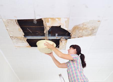 若い女性水で収集盆地から天井。天井パネルには、雨水の漏れから屋根に巨大な穴が破損しています。水には、天井が破損しています。