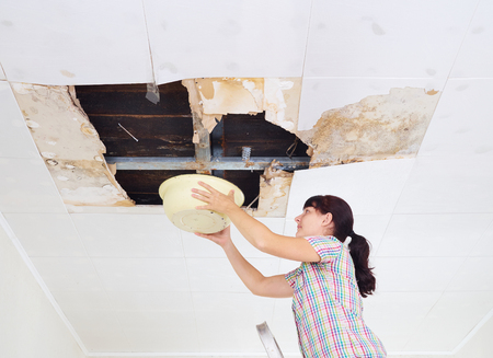 Young Woman Collecting Water In basin From Ceiling. Ceiling panels damaged huge hole in roof from rainwater leakage.Water damaged ceiling . Stockfoto