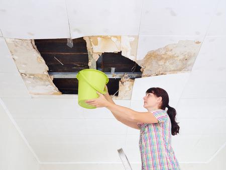 Junge Frau, die Wasser im Eimer von der Decke sammelt. Deckenplatten beschädigten riesiges Loch im Dach vom Regenwasserdurchsickern. Wasser beschädigte Decke. Standard-Bild