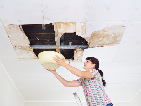 damaged roof: Young Woman Collecting Water In basin From Ceiling. Ceiling panels damaged huge hole in roof from rainwater leakage.Water damaged ceiling . Stock Photo