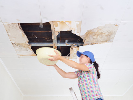Young Woman Collecting Water In basin From Ceiling. Ceiling panels damaged huge hole in roof from rainwater leakage.Water damaged ceiling . Banque d'images