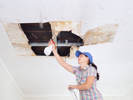Young Woman cleaning mold on ceiling.Ceiling panels damaged huge hole in roof from rainwater leakage.Water damaged ceiling .