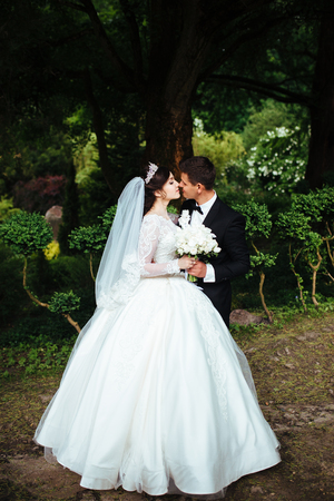 Portrait of a wonderful  wedding couple, they are walking in the beautiful park, standing under the very big tree and kissing