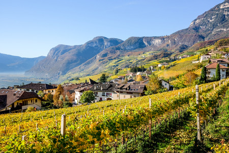 Cortaccia in Autumn, Strada del Vino, South Tyrol