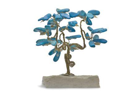 Baum des Fortune isoliert auf wei�em