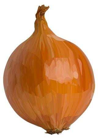 yellow_onion5 (18) .jpg