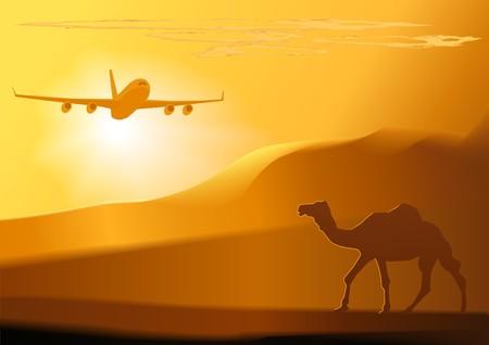 camel in desert: camel_jet(26).jpg