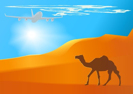 camel_jet_day(28).jpg