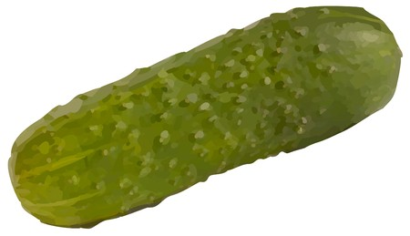 cucumber10 (10) .jpg Illustration