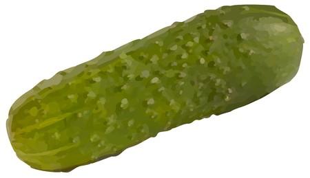 cucumber10(10).jpg