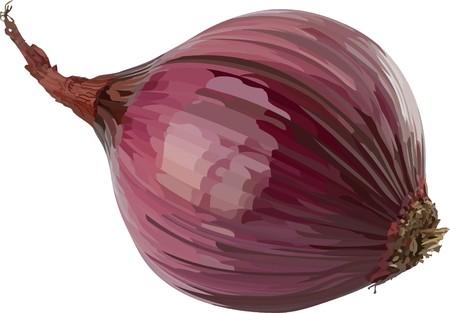 onion2(44).jpg