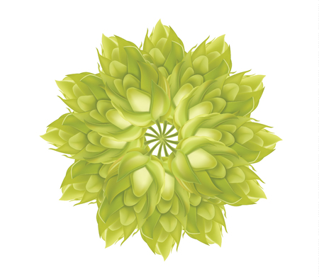 Abstract Hop flower plant 3d vector icon. Illustration