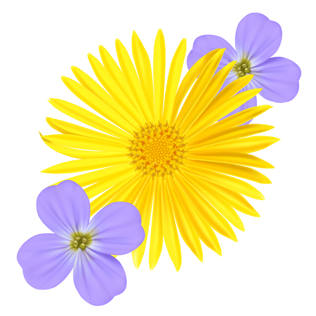 original single: Forget-me-not Light Blue Viola Flower and yellow daisy Isolated on White Background.