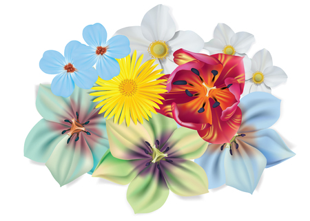 Beautiful bouquet of flowers. Vector summer flowers isolated on white background. Blossom for flower design. Chamomile, tulip, violets