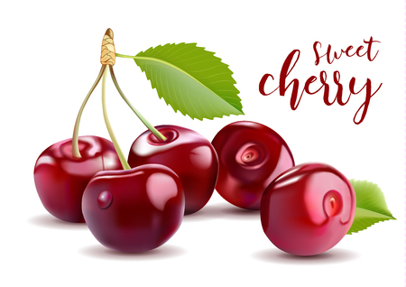 Sweet  3D Realistic Cherry, isolated on white background 免版税图像