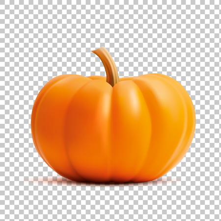 Bright orange vector realistic pumpkin isolated on transparency grid background Stock Vector - 88077487