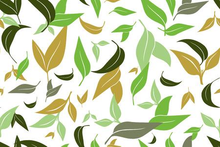 Patrón sin fisuras con hojas de té verde sobre fondo blanco. Pintura a mano sobre papel. Puede usarse en tela, papel de regalo. Ilustración vectorial Ilustración de vector