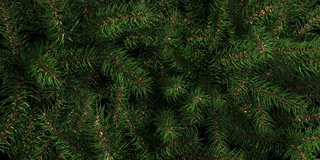 Background of Christmas tree branches. Happy New Year green theme background. 3d rendering. Imagens