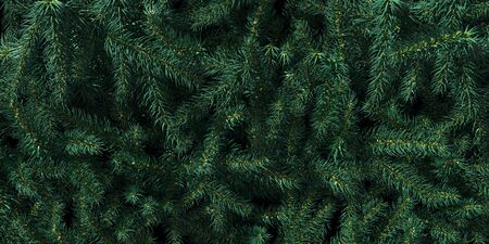 Background of Christmas tree branches. Happy New Year green theme background. 3d rendering. Stockfoto