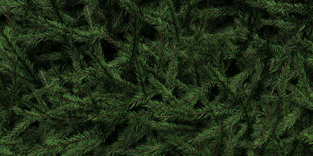 Background of Christmas tree branches. Happy New Year theme. 3d rendering.