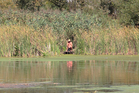 Fisherman sitting in the bulrush on the lake shore Editoriali