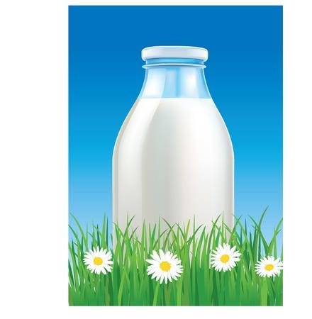 speelveld gras: melkfles op gras veld met kamille Stock Illustratie