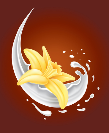 objects with clipping paths: milk splash with vanilla flower on chocolate background