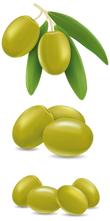 oilcan: green olive with leaves