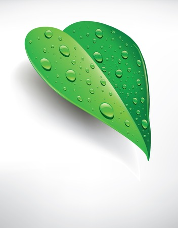 background green leaf with water droplets Illustration