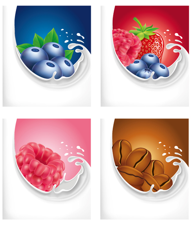 coffee beans: milk splash with blueberry, raspberry, coffee beans