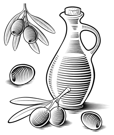 Olive and  oil hand drawing