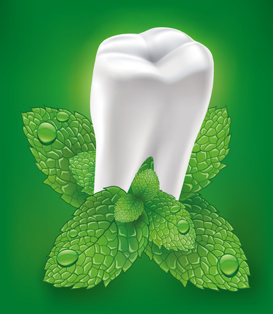 additional chemicals: white tooth with fresh mint leaf