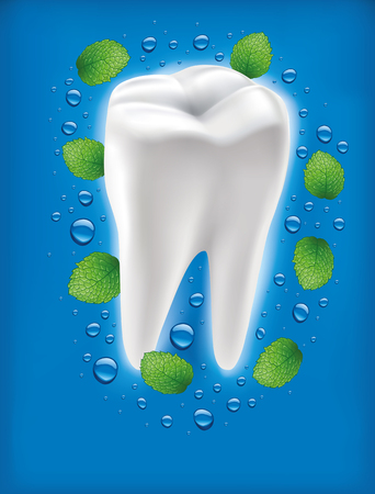 additional chemicals: white tooth with fresh mint leaf and water drops