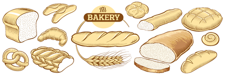 wheat bread: Bakery food item bread, baguette in wheat circle Illustration