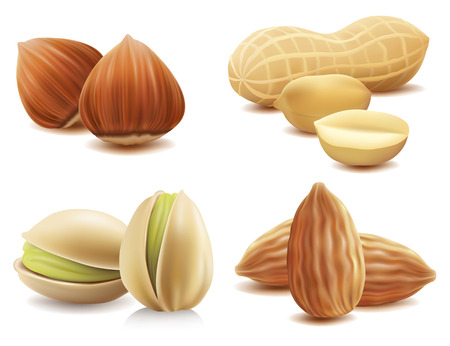Collection of various nuts on isolated on white