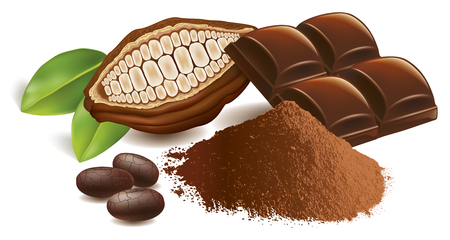 Cacao beans with chocolate table and powder