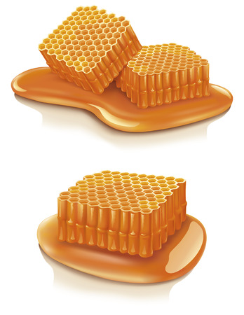 Set of illustrations of honey combs