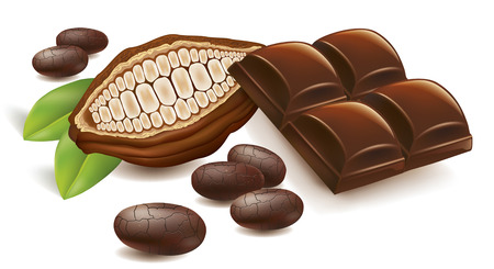 cacao beans with chocolate table