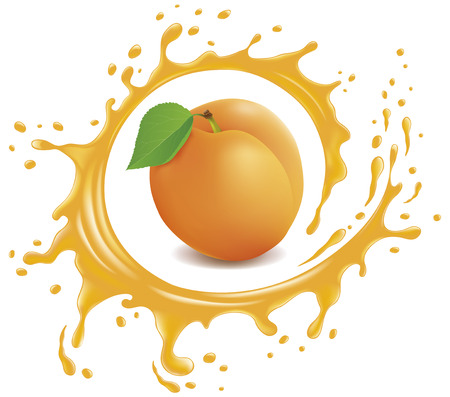 Fresh apricot with splash and many juice drops Illustration