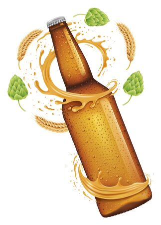 beer bottle, splash around the bottle, wheat and hop, isolated on white, vector