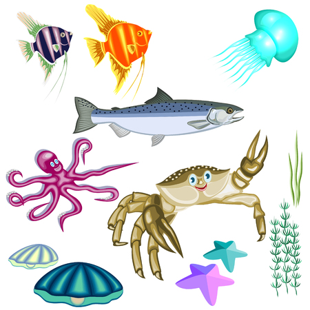 representatives of marine life:fish,crab,octopus,jellyfish,shells,seaweed and sea stars isolated on white background.  イラスト・ベクター素材