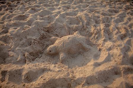 Sand sculpture of a sea turtle.