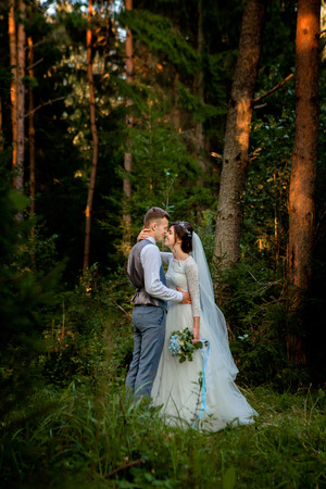 Beautiful newlyweds couple walking in the forest. Honeymooners. Bride and groom holding hand in pine forest, photo for Valentine's Day. Stock Photo