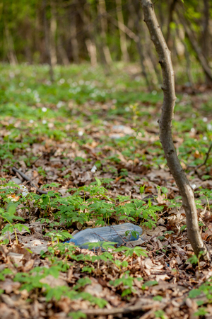 Plastic trash in the forest. Tucked nature. Plastic container lying in the grass. Foto de archivo