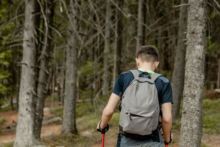 A man is a tourist in a pine forest with a backpack. A hiking trip through the forest. Pine reserve for tourist walks. A young man in a hike in the summer, rear view Reklamní fotografie